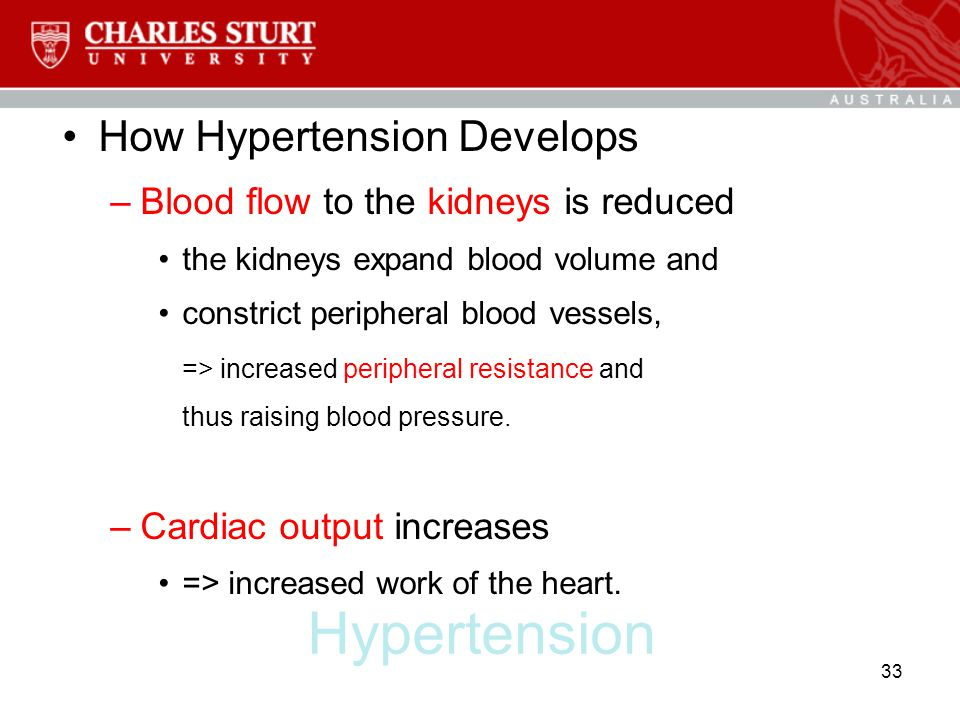 Hypertension How Hypertension Develops