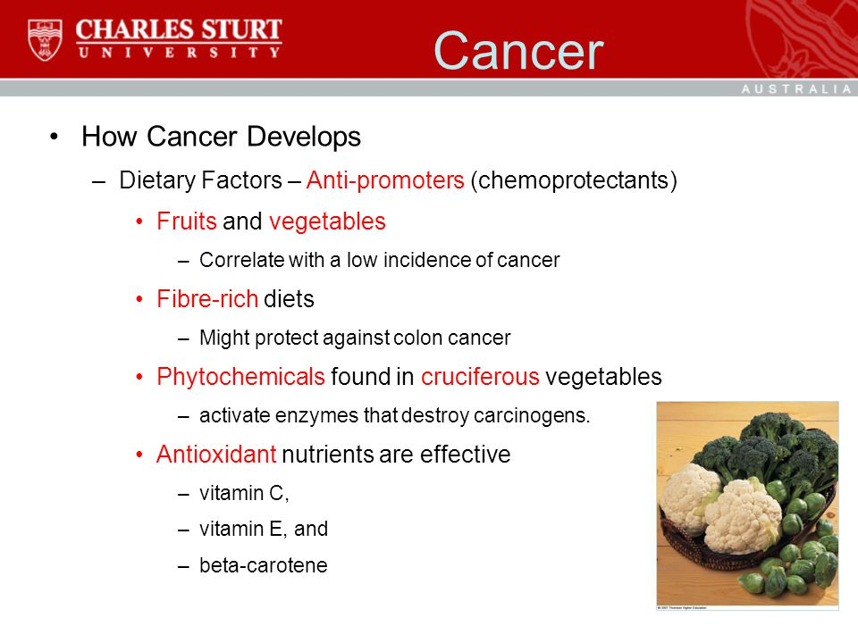 Cancer How Cancer Develops