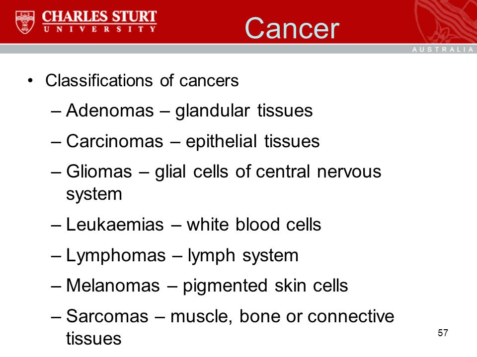 Cancer Adenomas – glandular tissues Carcinomas – epithelial tissues