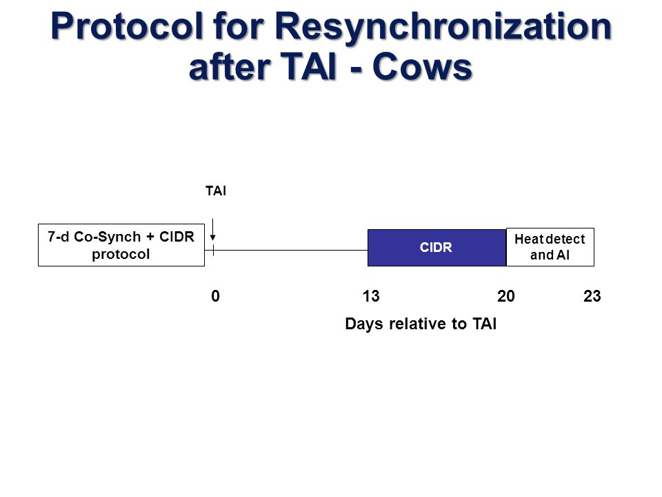 Protocol for Resynchronization after TAI - Cows