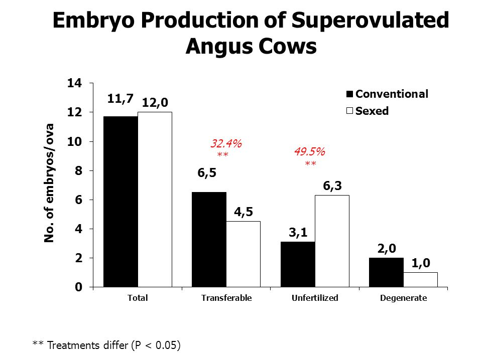 Embryo Production of Superovulated Angus Cows