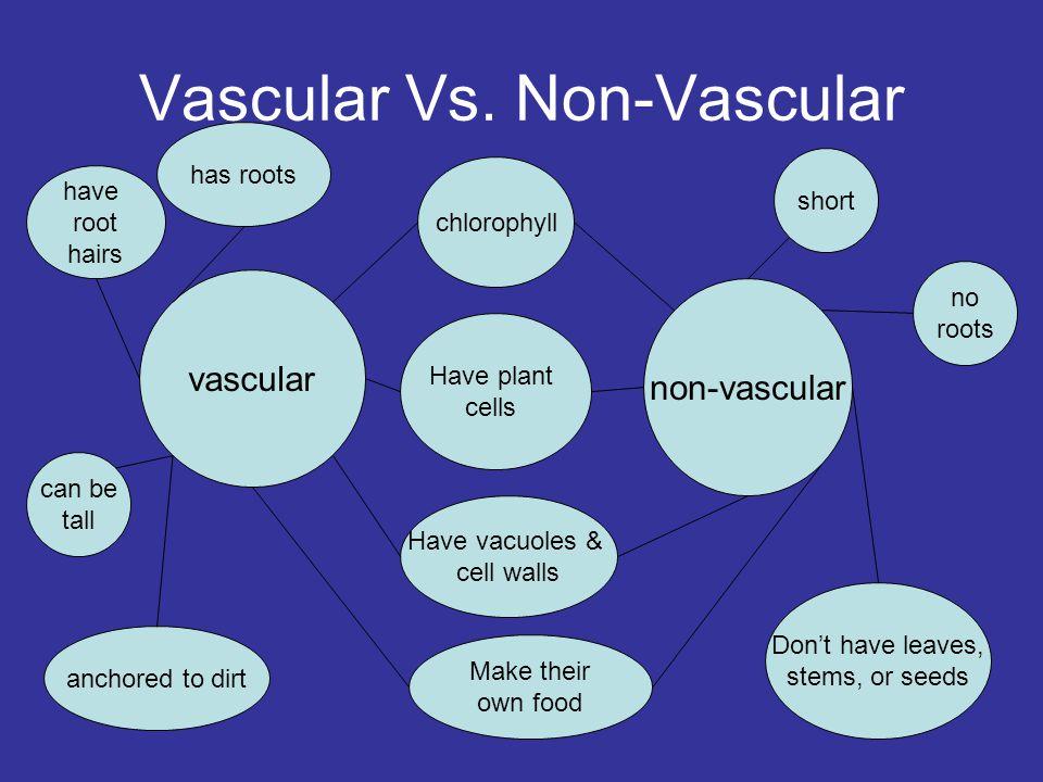 Vascular Vs. Non-Vascular