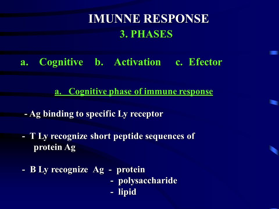 IMUNNE RESPONSE 3. PHASES a. Cognitive b. Activation c. Efector