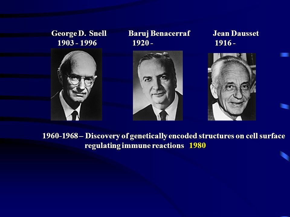 regulating immune reactions 1980