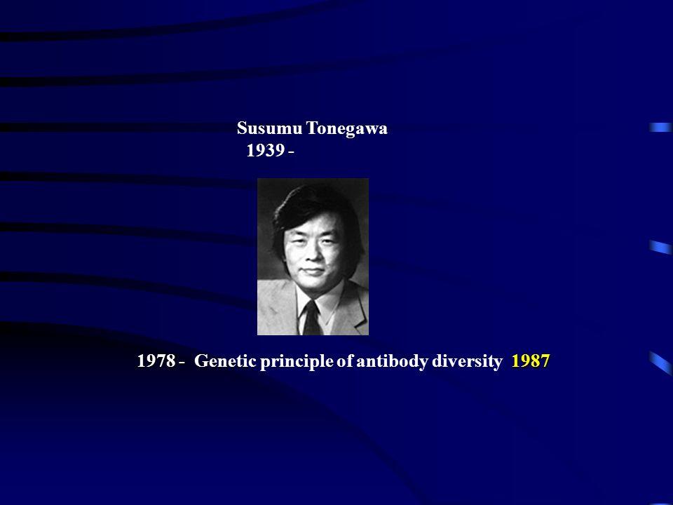 1978 - Genetic principle of antibody diversity 1987