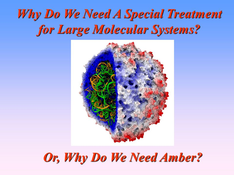 Why Do We Need A Special Treatment for Large Molecular Systems