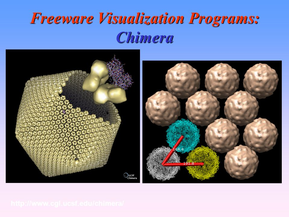 Freeware Visualization Programs: Chimera