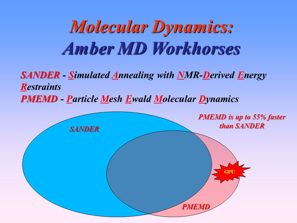 Molecular Dynamics: Amber MD Workhorses