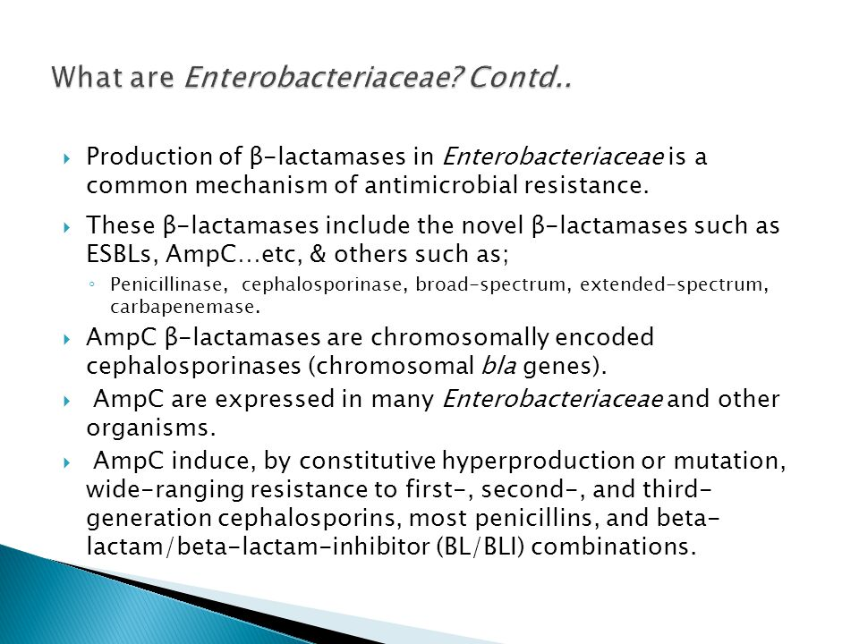 What are Enterobacteriaceae Contd..