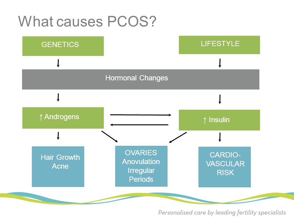 What causes PCOS GENETICS LIFESTYLE Hormonal Changes ↑ Androgens