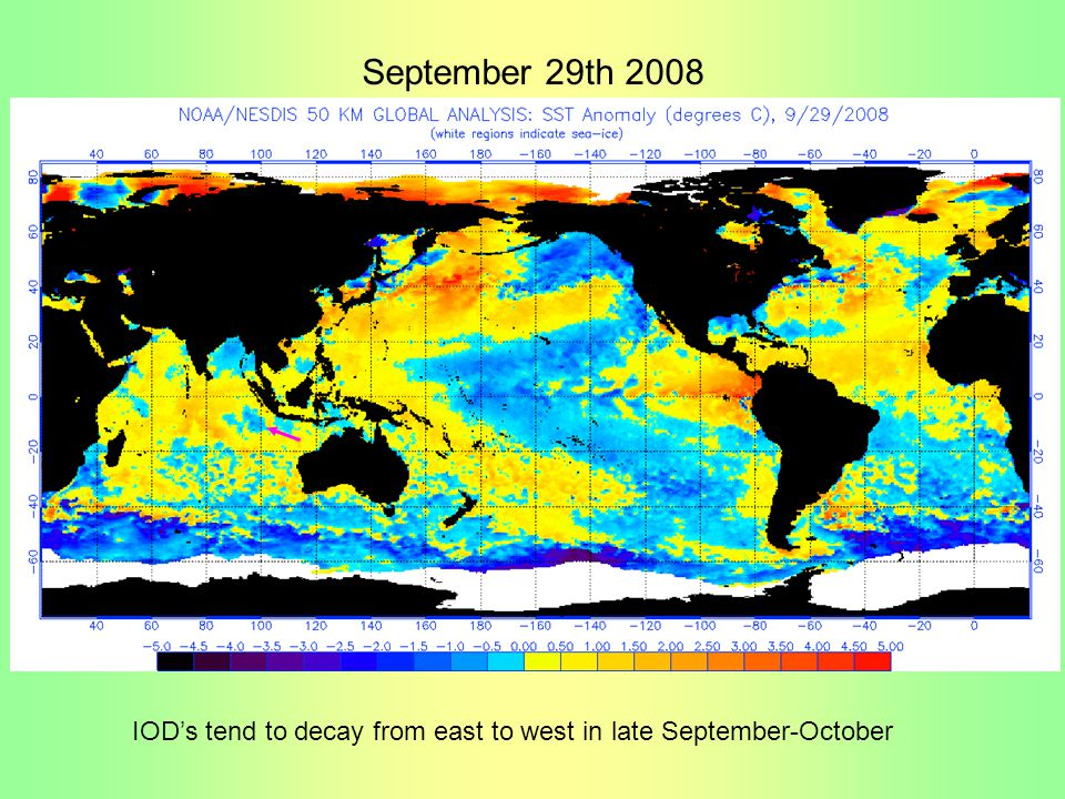 September 29th 2008 IOD's tend to decay from east to west in late September-October