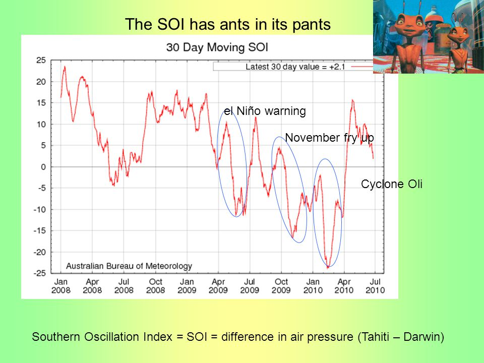 The SOI has ants in its pants