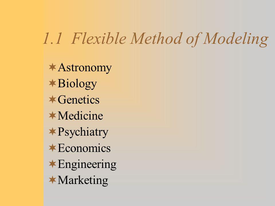 1.1 Flexible Method of Modeling