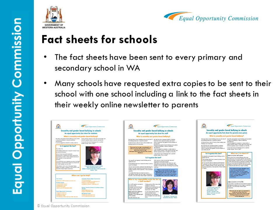 Fact sheets for schools