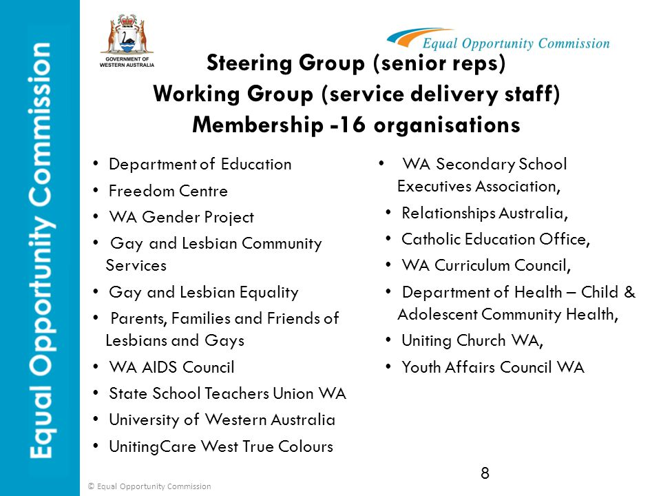 Steering Group (senior reps) Working Group (service delivery staff) Membership -16 organisations