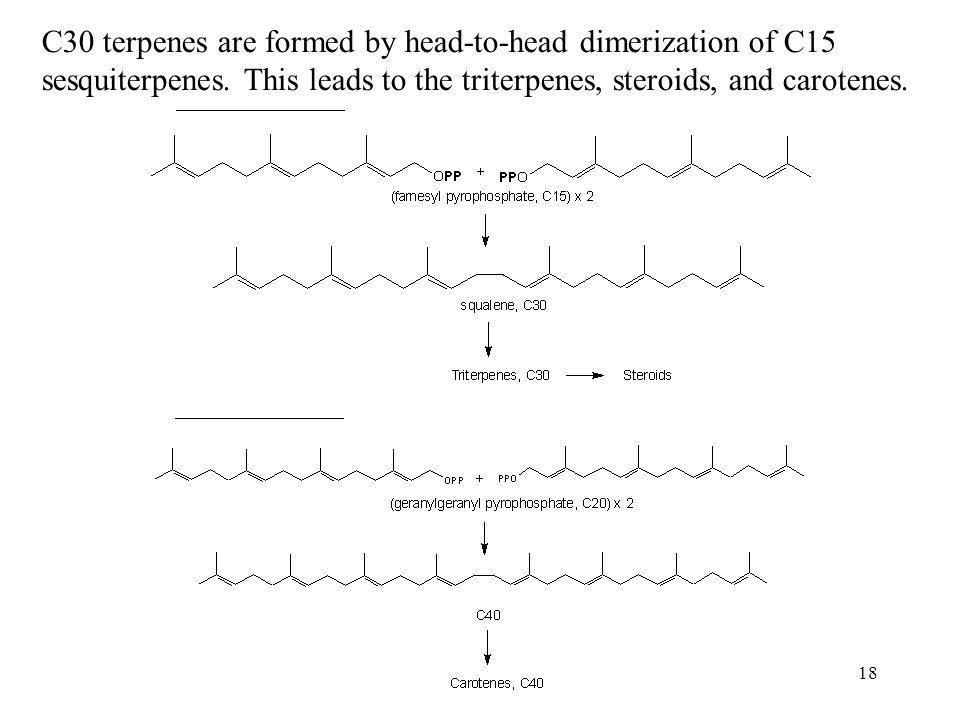 C30 terpenes are formed by head-to-head dimerization of C15 sesquiterpenes.