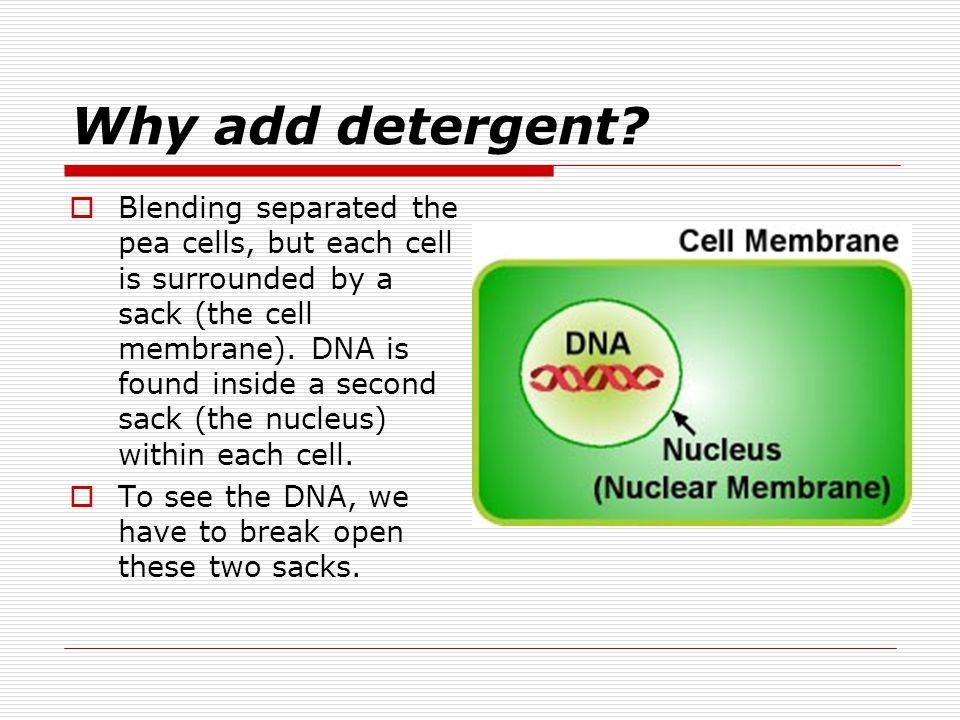 Why add detergent