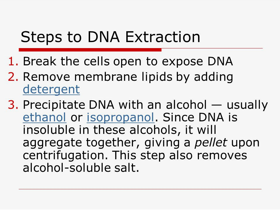 Steps to DNA Extraction