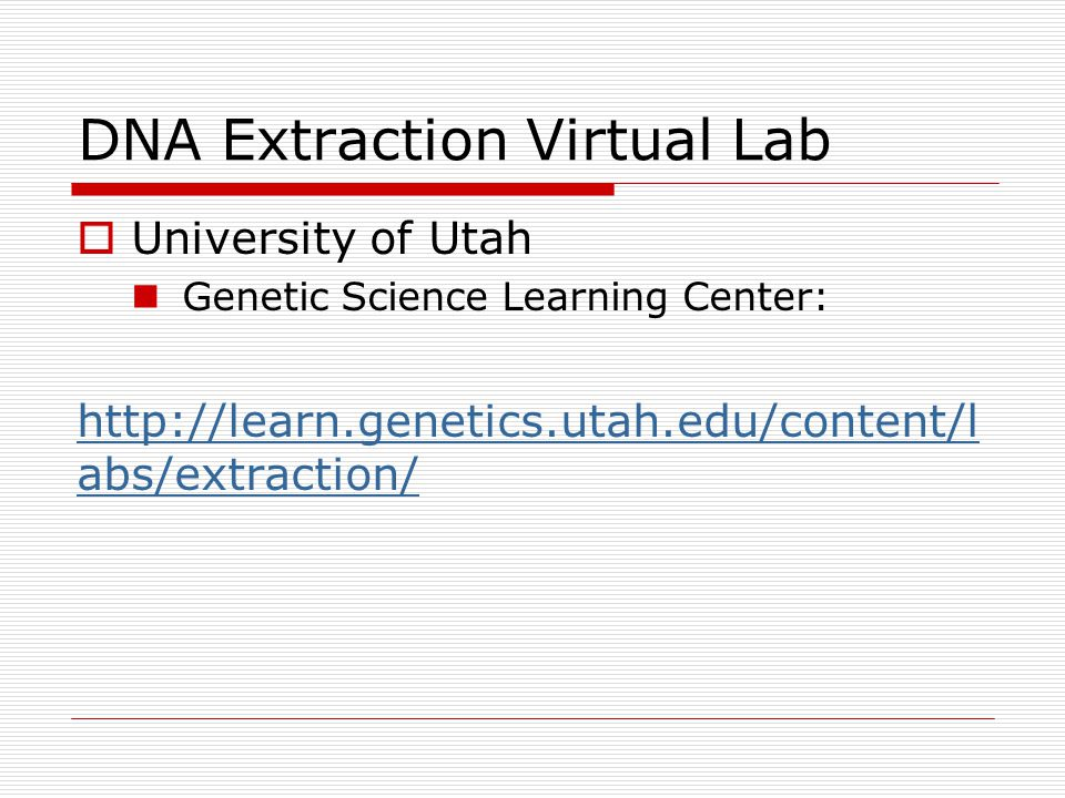 DNA Extraction Virtual Lab