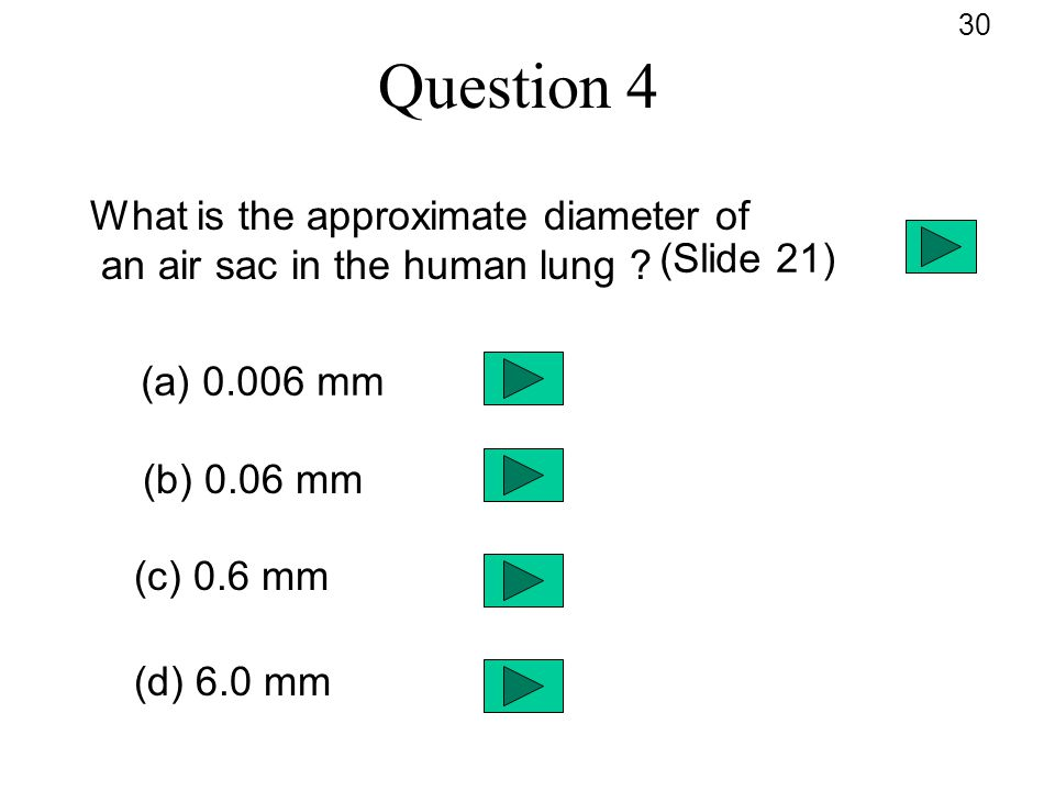 Question 4 What is the approximate diameter of