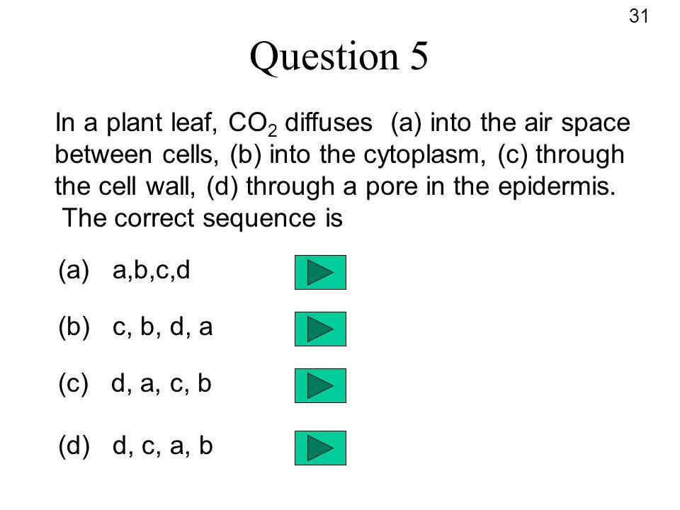 31 Question 5.
