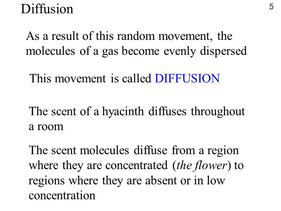 Diffusion As a result of this random movement, the