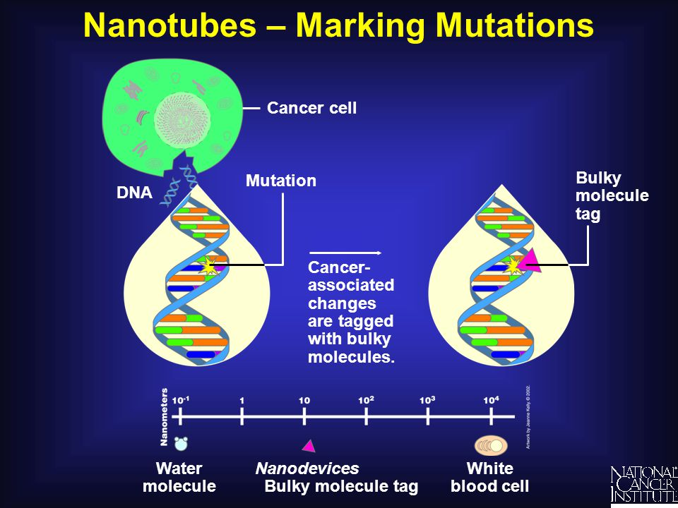 Nanotubes – Marking Mutations