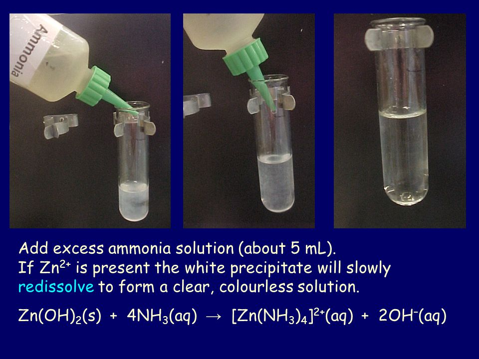 Add excess ammonia solution (about 5 mL).