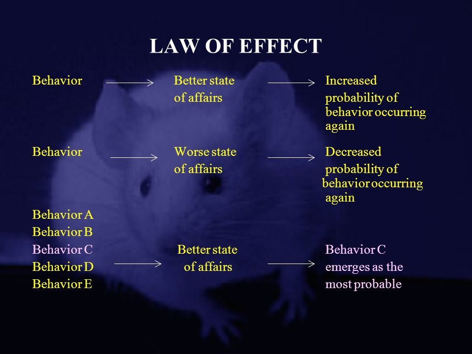 LAW OF EFFECT Behavior Better state Increased