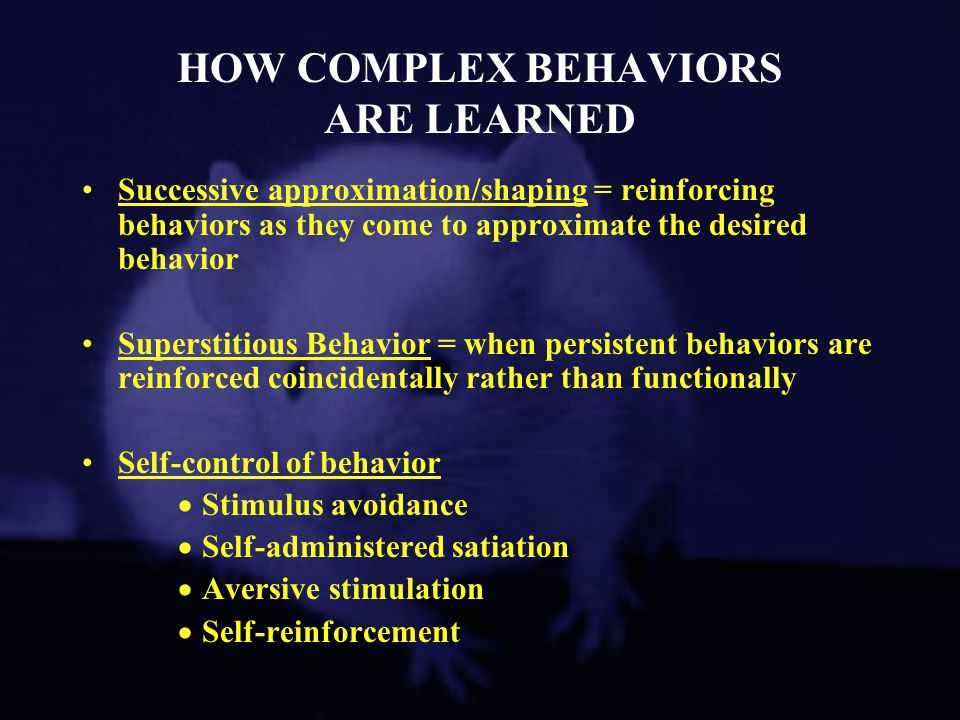 HOW COMPLEX BEHAVIORS ARE LEARNED