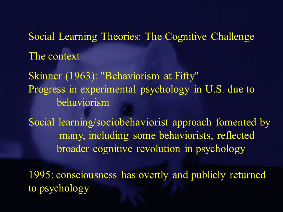 Social Learning Theories: The Cognitive Challenge