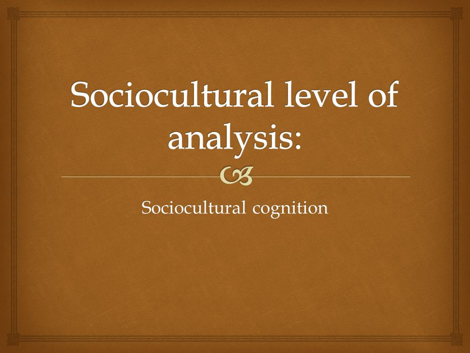 Sociocultural level of analysis: