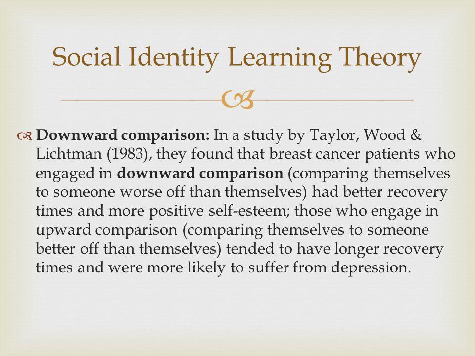 Social Identity Learning Theory