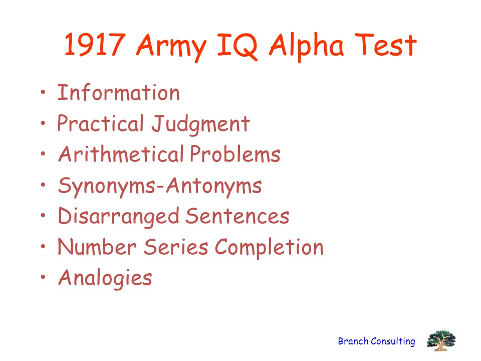 1917 Army IQ Alpha Test Information Practical Judgment
