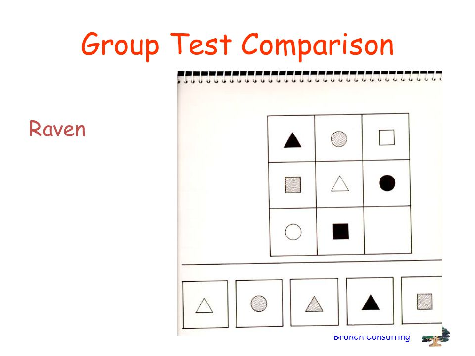 Group Test Comparison Raven