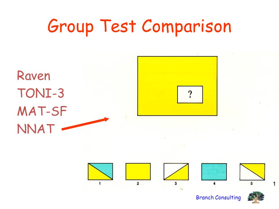 Group Test Comparison Raven TONI-3 MAT-SF NNAT