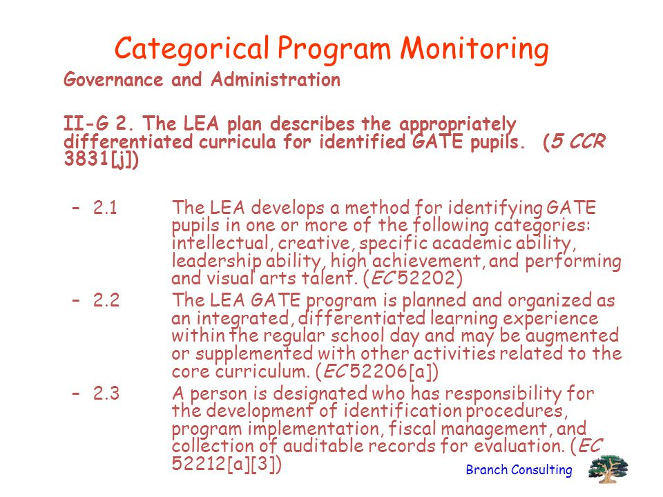 Categorical Program Monitoring