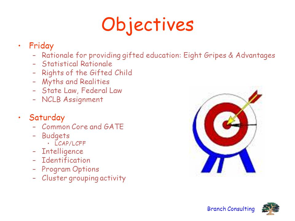 Objectives Friday Saturday