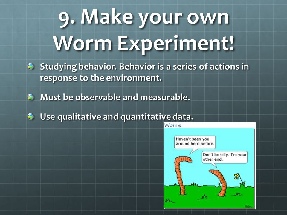 9. Make your own Worm Experiment!