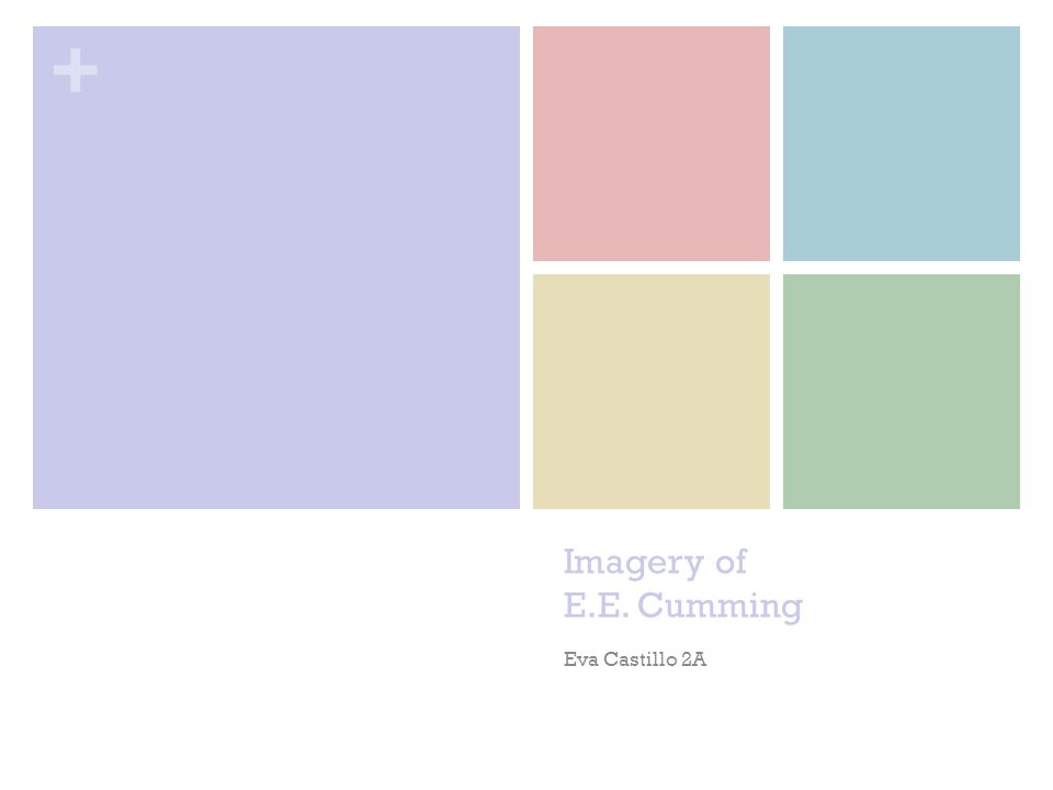 Imagery of E.E. Cumming Eva Castillo 2A