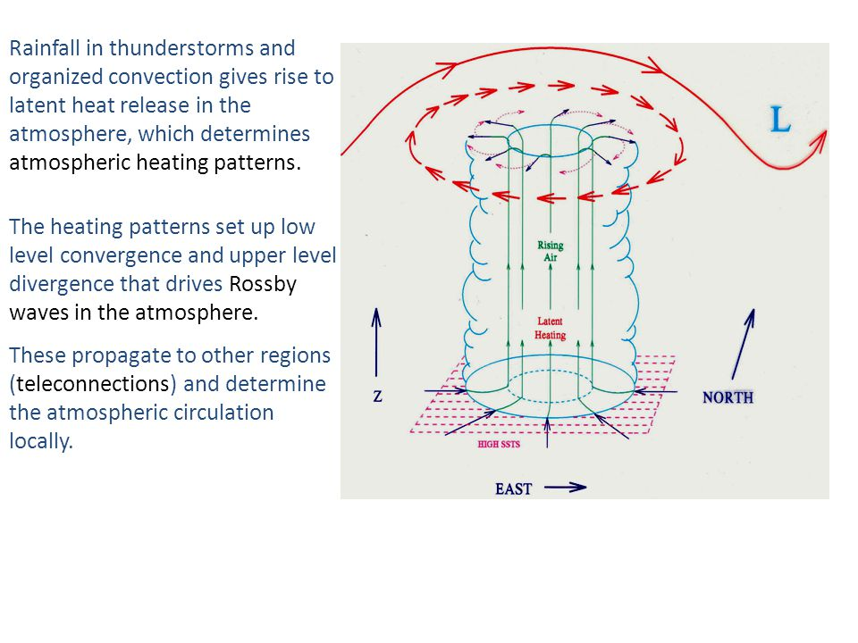 Rainfall in thunderstorms and organized convection gives rise to latent heat release in the atmosphere, which determines atmospheric heating patterns.