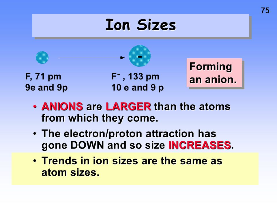 Ion Sizes Forming an anion.