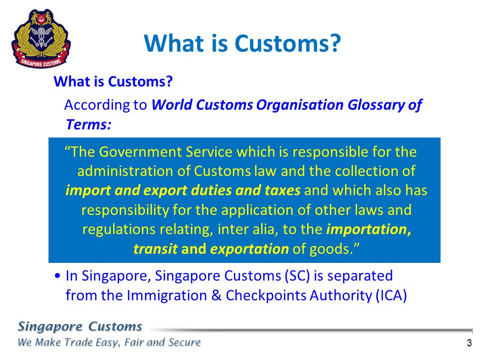 What is Customs What is Customs