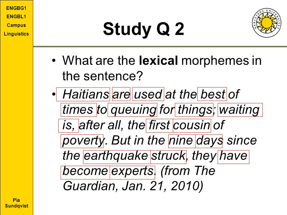 Study Q 2 What are the lexical morphemes in the sentence