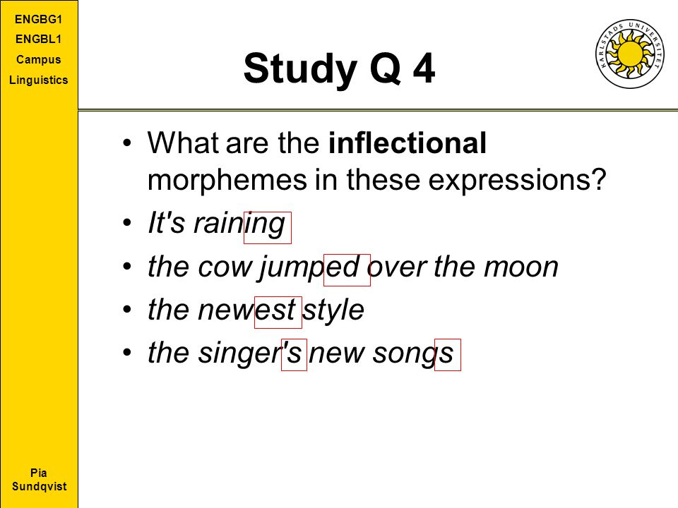 Study Q 4 What are the inflectional morphemes in these expressions