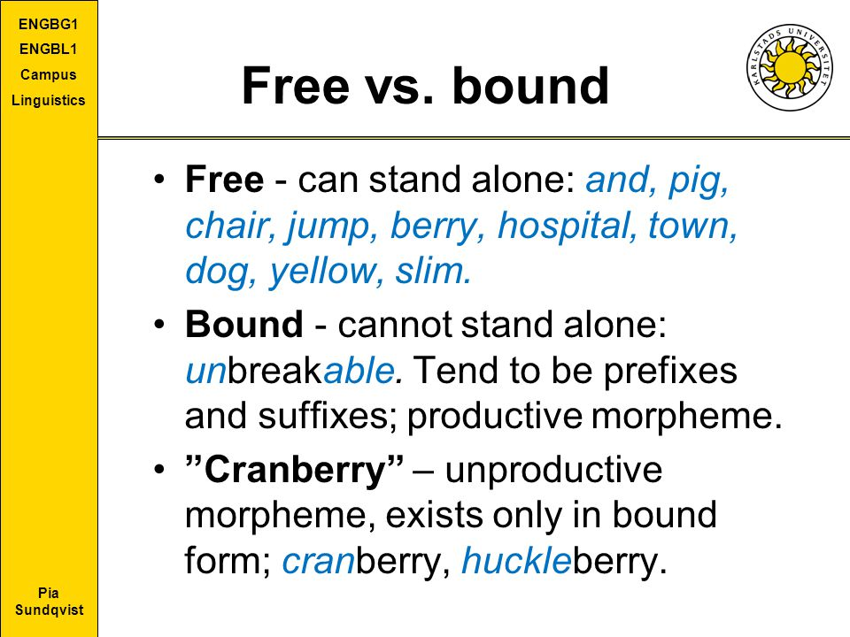 Free vs. bound Free - can stand alone: and, pig, chair, jump, berry, hospital, town, dog, yellow, slim.