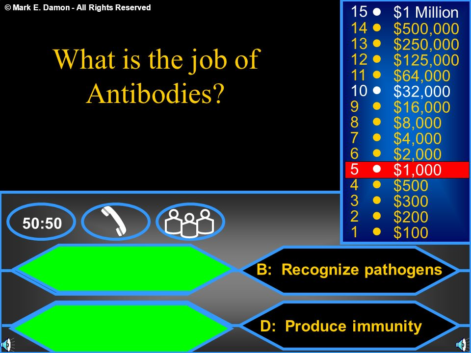 What is the job of Antibodies
