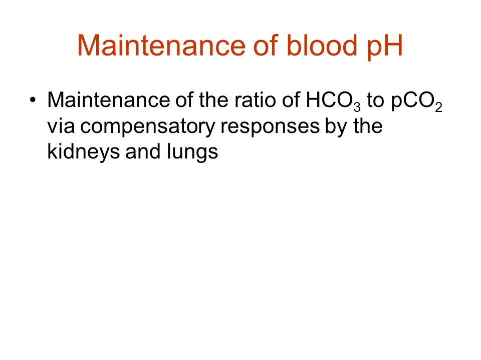 Maintenance of blood pH