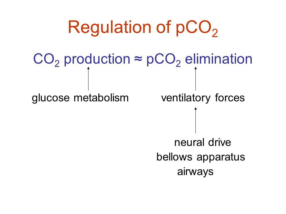CO2 production ≈ pCO2 elimination