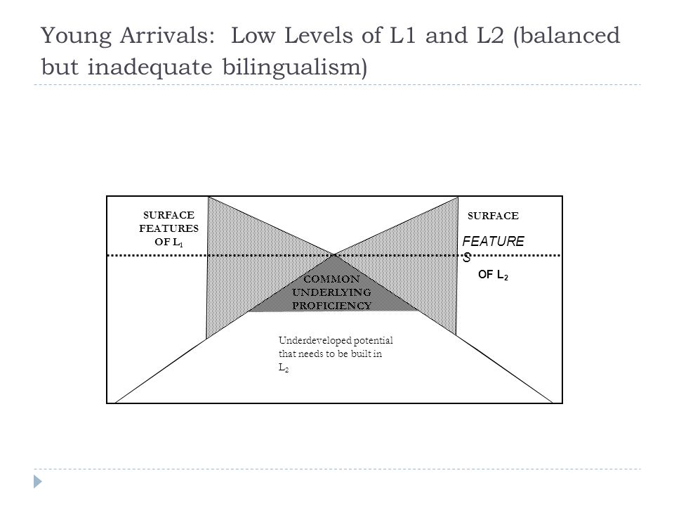 Young Arrivals: Low Levels of L1 and L2 (balanced but inadequate bilingualism)